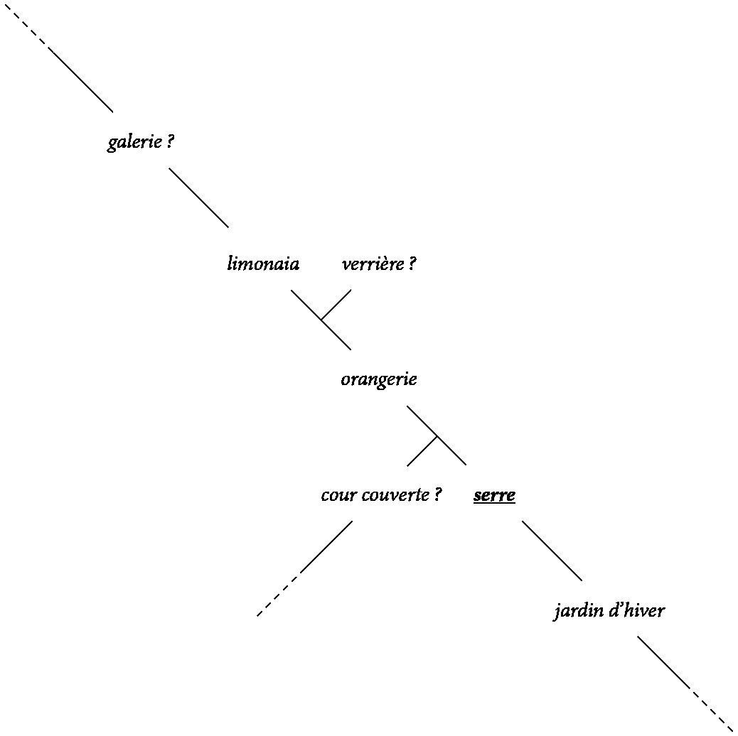 phylogenetique serre